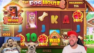 SLOT ONLINE - Proviamo la THE DOG HOUSE MEGAWAYS