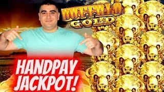 Buffalo gold jackpot videos