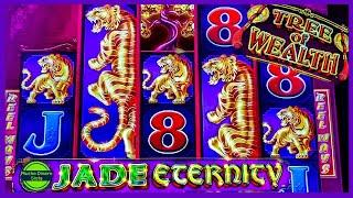 HUGE HANDPAY JACKPOT/ TREE OF WEALTH JACKPOT/ FREE GAMES JACKPOT/ HIGH LIMIT/ LIMITE ALTO