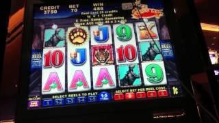 Banana King Wild Ways Slot Machine Bonus and Line Hit