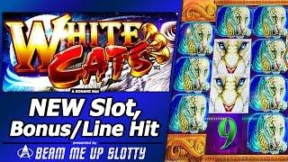 White Cats Slot - Live Play, Free Spins Bonus and Nice Line Hit