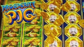 Amazing Win! Gold Stacks 88 Prosperity Pig Free Spins
