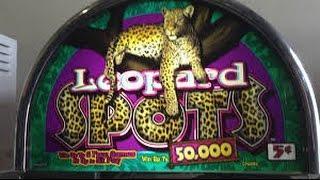 OLDIE IGT Leopard Spots slot machine free Spin bonus 5c denom
