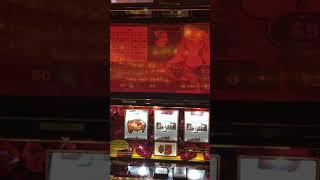 VGT SLOTS - RED RUBY SLOTS - $5 MAX BET LIVE PLAY WIN HANDPAY JACKPOT!