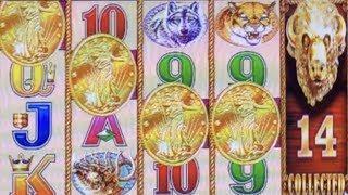 BUFFALO GOLD BIG WIN  BONUS 14 GOLD BUFFALO HEAD ANXIETY  CAN I DO IT ?