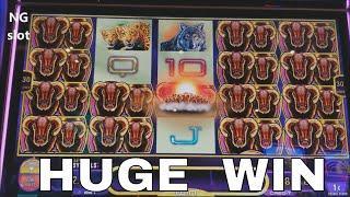 SUPER BIG WINNEW SLOT  MIDNIGHT STAMPEDE Slot Machine Bonus Won and Big Win Line Hit! Live Play