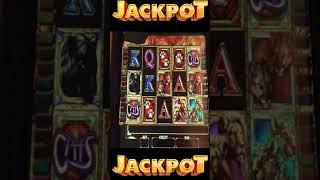 CATS WILDS PAYS A JACKPOT! HIGH LIMIT SLOTS #shorts