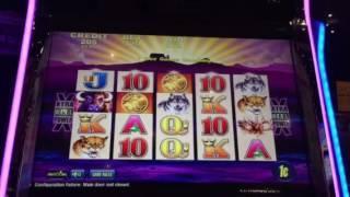 Buffalo Slot Machine Free Spin Bonus New York Casino Las Vegas