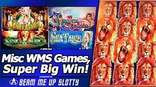 Live Play, Free Spins and a Super Big Win in Misc WMS slots