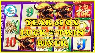 MORE WINNING FROM OUR TRIP TO TWIN RIVER! YEAR OF THE OX LUCK on AINSWORTH! RETRIGGERS = BIG WIN!