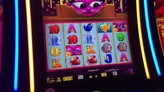 Miss Kitty Gold Slot Machine Free Spin Bonus Cosmopolitan Casino Las Vegas