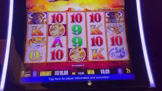 Buffalo Gold - High Limit Slot Play - Seminole Hard Rock