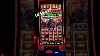 OMG!!! Look at that $5000 win!!!!