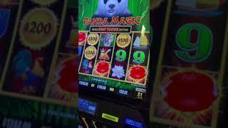 $100 Bet Dragon Link Slot JACKPOT #Shorts