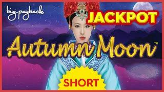MY BIGGEST JACKPOT!! on Dragon Link Autumn Moon Slot! #Shorts
