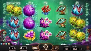 Fruitoids slot from Yggdrasil Gaming - Gameplay