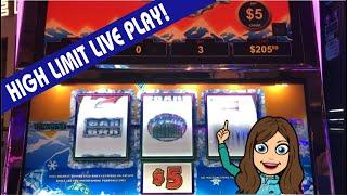 VGT POLAR HIGH ROLLER SLOT MACHINE ️ AND BUFFALO DELUXE  BIG WIN, HIGH LIMIT!