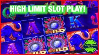 RED RHINO FREE GAMES/ HIGH LIMIT SLOT PLAY/ WILDS WILDS WILDS