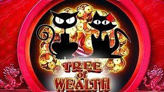 Chasing the Progressives & Bonuses  Tree of Wealth  The Slot Cats