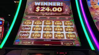 Outback Buck MAX BET FULL BOARD