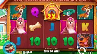 DOG HOUSE MEGAWAYS Slots Gameplay   Pragmatic Play    PlaySlots4RealMoney