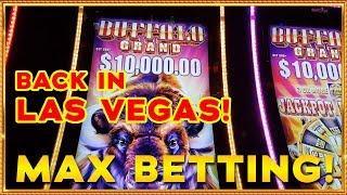 Vegas, WE MEET AGAIN! MAX BETS ON BUFFALO GRAND & ZHEN CHAN SLOTS !