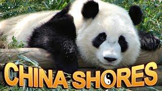 China Shores - live play / Big Win linehit / bonus/ jackpot streams feature - Slot Machine Bonus