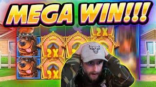 MEGA WIN!! Dog House BIG WIN - Casino Games from Casinodaddy live stream