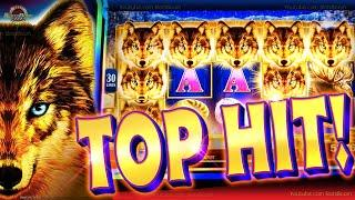 I GOT 5 WOLVES!!! TOP HIT on Golden Wolves & Bonuses - 2c Konami Slot Game