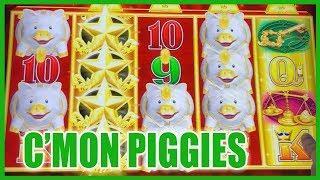 Piggy Love with Buffaloes + Jason!!   Slot Machine Pokies w Brian Christopher