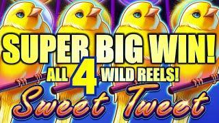 SUPER BIG WIN! ALL 4 WILD CANARIES!  $5.00 BET SWEET TWEET (DROP & LOCK) Slot Machine (SG)