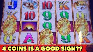 ️BUFFALO GOLD 4 COINS MYTH️ 4 COINS = BIG WIN? NEIGHBOR 15 HEADS COLLECTED JACKPOT HANDPAY
