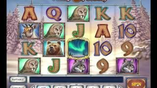 Wild North slot from Play'n GO - Gameplay