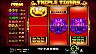 Triple Tigers slot from Pragmatic Play - Gameplay