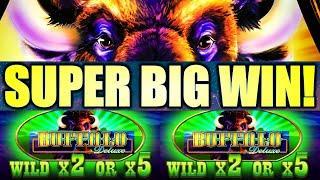 SUPER BIG WIN!! BUFFALOOOO!!! BUFFALO DELUXE Slot Machine (Aristocrat Gaming)