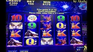 Akafuji Slot Big WinTimber Wolf Deluxe 2c Slot Machine Bet $3 Retrigger and Retrigger, San Manuel
