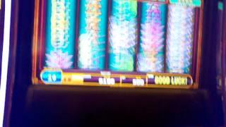 100 Line Bally Perfect 8 Bonus Free Spins Big WIN  Language Warn LOL